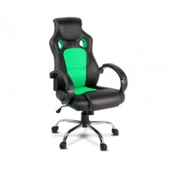 Artiss Gaming Chair Computer Office Chairs Green & Black